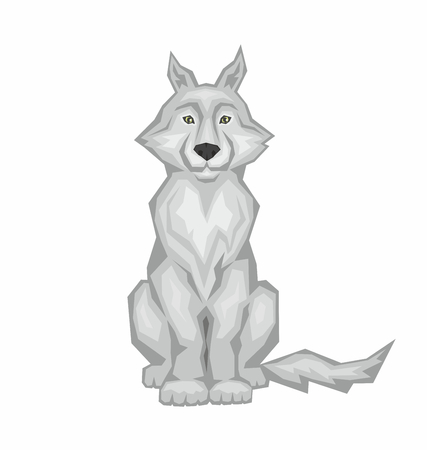 sits: the big gray wolf sits. wild forest animal