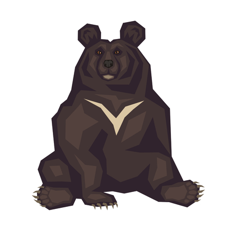 omnivorous: Himalayan black bear. Vector image of a predatory animal. Isolated on a white background. Illustration