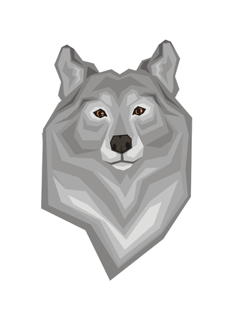 grey wolf: Head of a grey wolf. Vector image of a predatory animal. Isolated on a white background.