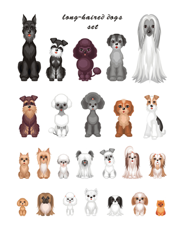 Images of a cute purebred dogs in a cartoon style. Vector illustrations isolated on white background. Çizim