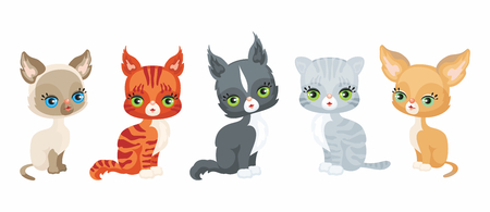 Vector image of a cute purebred kittens in a cartoon style. Colorful illustrations isolated on a white background.