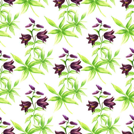 Seamless pattern with Kamchatka lily on a white background. Northern wild flower. Watercolor painting.