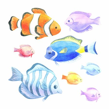 Beautiful exotic fishes set. Colorful hand drawn illustrations isolated on a white background. Watercolor painting. Imagens