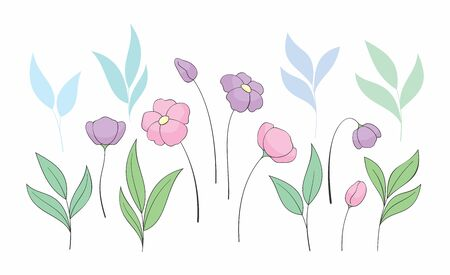 Beautiful spring flowers set. Colorful vector illustration isolated on a white background. Standard-Bild - 139900098