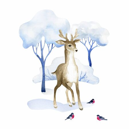 Beautiful deer. Hand painted watercolor illustration isolated on a white background.