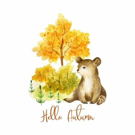 Cute baby bear. Hand painted watercolor illustration isolated on a white background. Standard-Bild - 140436987