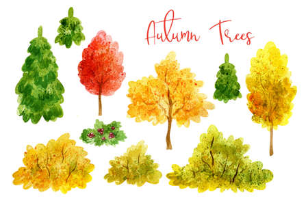 Autumn trees set. Hand painted watercolor illustrations isolated on a white background. 写真素材