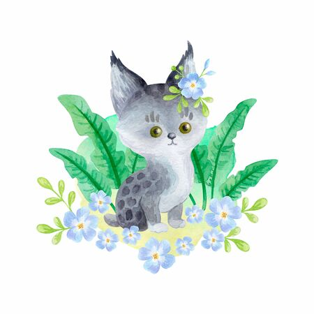 Cute bobcat. Hand painted watercolor illustration isolated on a white background.