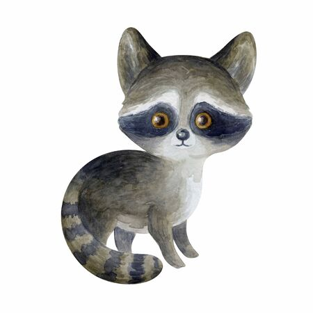 Cute raccoon. Hand painted watercolor illustration isolated on a white background.