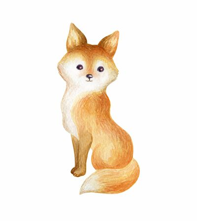 Cute fox. Hand painted watercolor illustration isolated on a white background. Stock fotó
