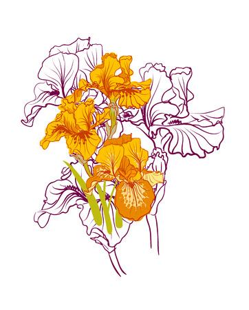 decorative designs of iris flowers photo