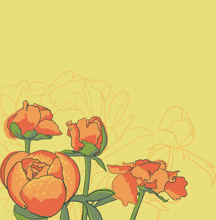 decorative image peony flowers Stock Photo - 23010100
