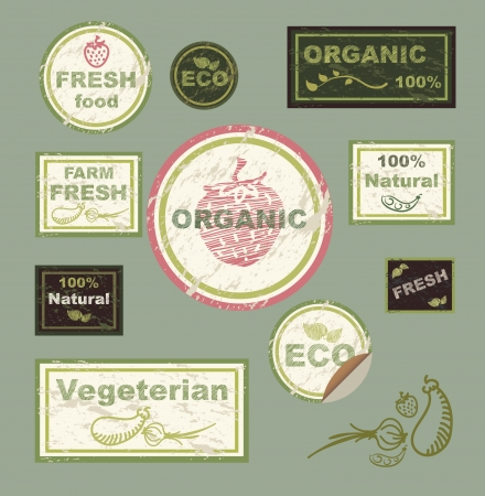 icons, labels, on the theme of ecology, fresh food, vegetarian, natural, organic