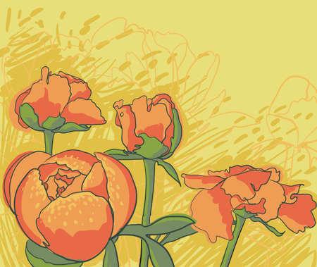 Vector decorative image peony flowers Illustration