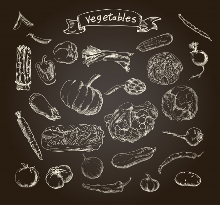 Vector illustration of a set of hand-painted vegetables