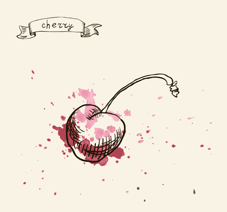 Vector watercolor hand drawn vintage illustration of cherry