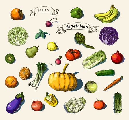 Vector illustration of a set of hand-painted vegetables, fruits 向量圖像