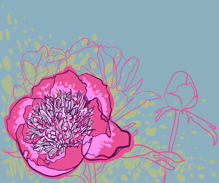 pion: Vector decorative image peony flowers Illustration