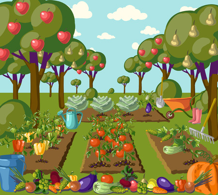 Vintage garden banner with root veggies illustration Çizim