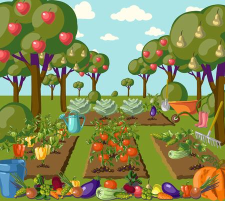veggies: Vintage garden banner with root veggies illustration Illustration