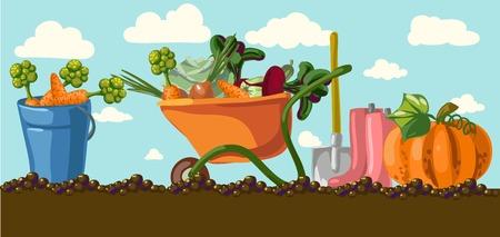 Vintage garden banner with root veggies illustration  イラスト・ベクター素材