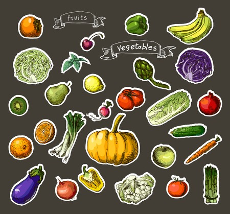Vector illustration of a set of hand-painted vegetables, fruits Illustration