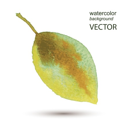 Abstract vector leaf watercolor textured hand painted background