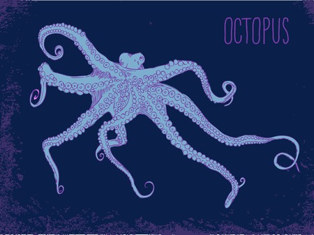 Vector illustration of hand drawn with octopus 向量圖像