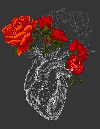 dessin coeur: dessin coeur humain avec des fleurs fond. vecteur Illustration