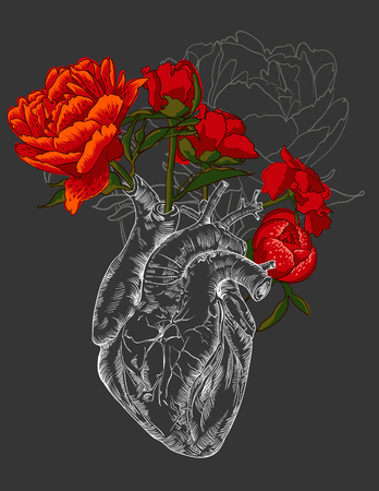 bunch of hearts: drawing Human heart with flowers background. vector