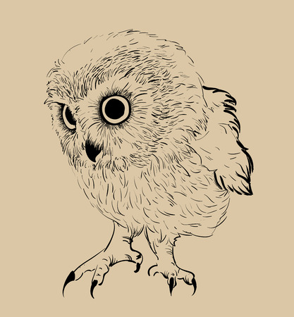 Owl hand drawn, black and white isolated vector illustration