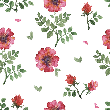 flowers watercolor of floral rose seamless pattern Stock Photo