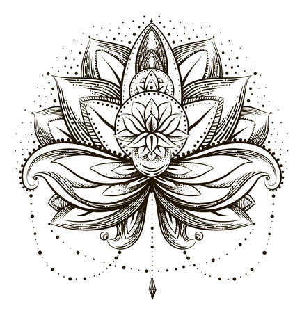 lotus petal: Vector ornamental Lotus Illustration