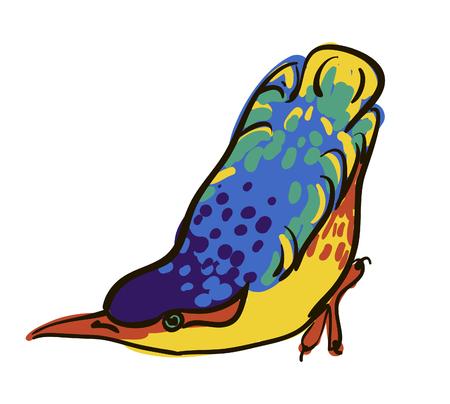 sketch of bird, watercolor Illustration