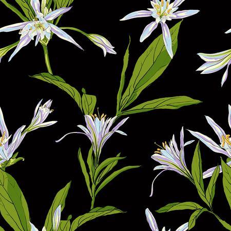 黒い背景に手描きの花ユリ。線画スタイルの分離ベクトルイラストレーション。デザイン要素。背景シームレス  イラスト・ベクター素材
