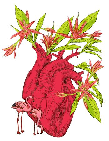 drawing Human anatomical heart with flowers, leaves and birds, gift, congratulations on Valentine s Day vector