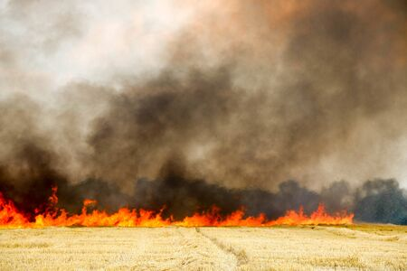 Forest and steppe fires dry completely destroy the fields and steppes during a severe drought. Disaster brings regular damage to nature and economy of region. Lights field with the harvest of wheat, tornado