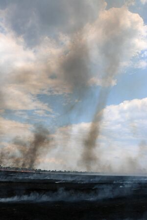 Scorched earth, spring fires. A field with burnt grass. The destruction of insects. smoke, tornado 免版税图像