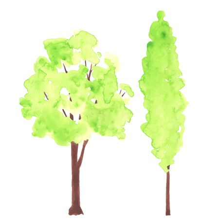 lush foliage: Watercolor green trees. Each one is separately. Illustration