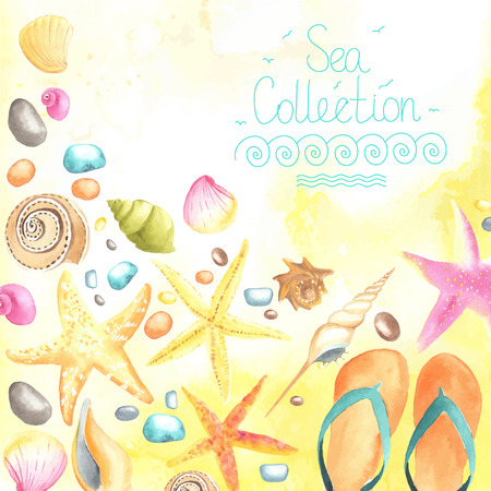 caribbean beach: Watercolor shells and starfishes on sand background.  All object made in vector. Each one is separately. Illustration