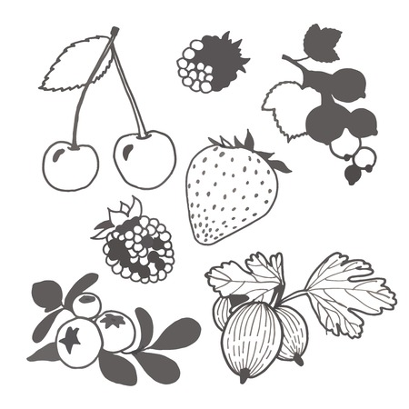 currants: Set of hand painted cartoon unpainted berries. Illustration