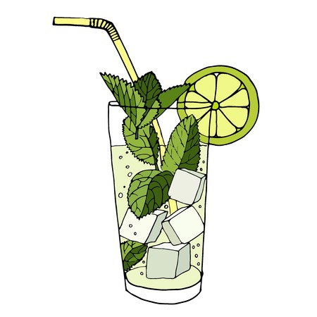 cocktail drinks: Hand drawn vector illustration of cocktail mojito