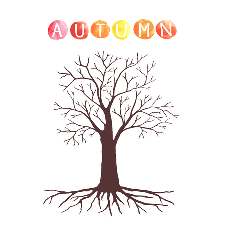 tree leaves: Autumn tree with without leaves. Illustration
