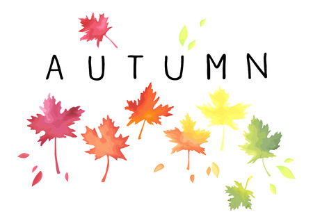 Autumn. Lettering with motley maple leaves isolated on white background. Ilustração