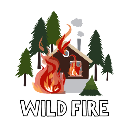 Wild fire in a forest. Burning house.