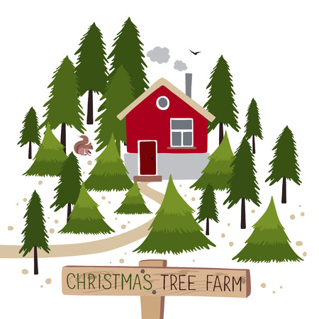 Christmas tree farm. Christmas Trees for sale