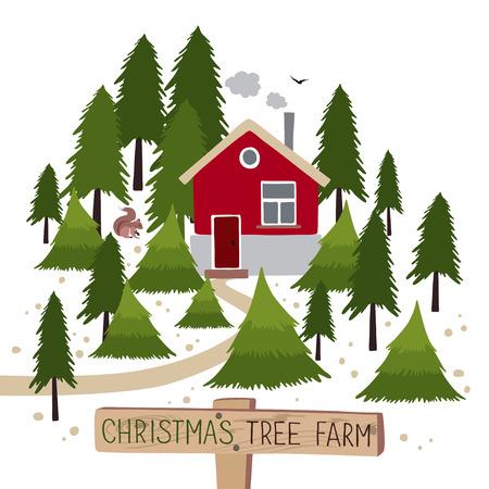 xmax: Christmas tree farm. Christmas Trees for sale