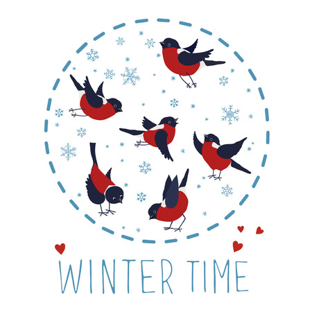 Vector illustration about winter time. Bullfinches and snowflakes isolated on white background. Vector illustration