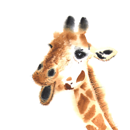 Realistic giraffe made in watercolor. Close-up. Hand drawn illistration Фото со стока
