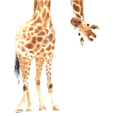 Realistic watercolor giraffe Stock Illustratie